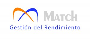 Logo Match Gris Horizontal